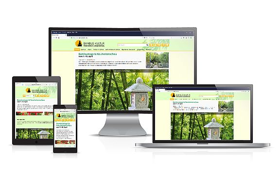 Online Shops Brasestruck Printdesign Webdesign Programmierung